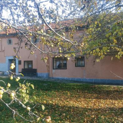 Casa Patro - jardín