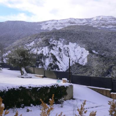 Oroel nevado- Barosol