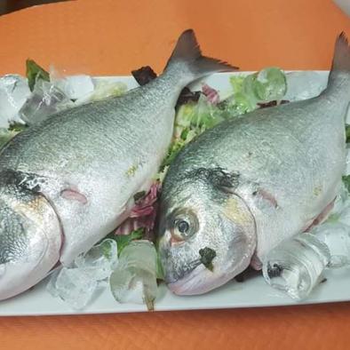 Dorada salvaje - Restaurante Sarao